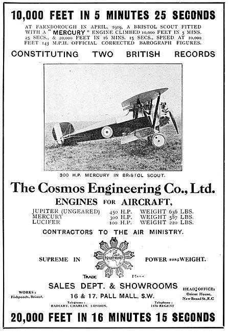 Cosmos Mercury Aero Engine - Bristol Scout