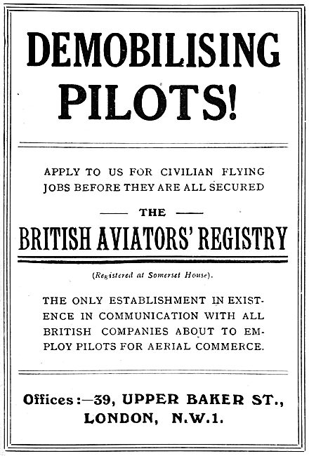 RAF Recruitment - The British Aviators' Registry 1919