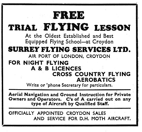 Surrey Flying Services - Free Trial Lesson: A & B Licences